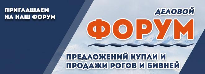 Наш форум Доска объявлений в 2019 году