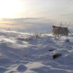 В Якутии угасает охотничий промысел