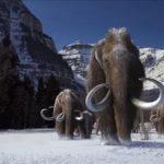 Теория – почему вымерли мамонты